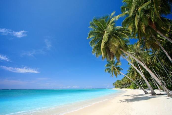 Bahamas_beach_2443_4879_90109c